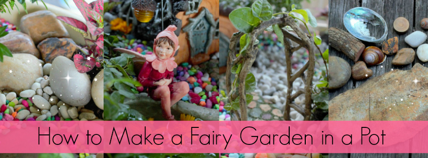 How to Make a Fairy Garden in a Pot - Blog Post