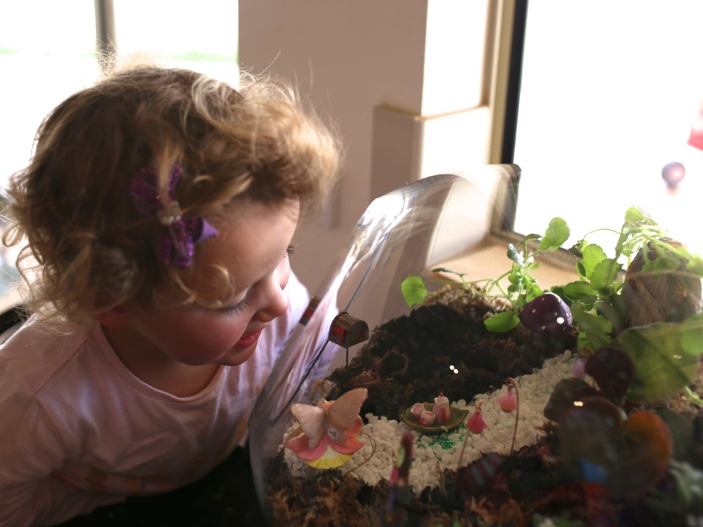 Magic of Childhood - Fairy Gardening an Terrariums - Image by Belinda Doyle