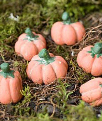 Set of 3 Assorted Miniature Pumpkins