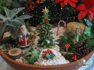 Christmas Fairy Garden in a pot - 2013