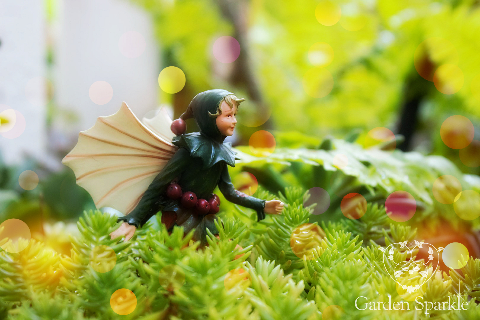 holly-fairy-fairy-garden-supplies-australia