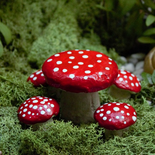 The Quirky Mushroom Table Set