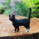 little-black-cat-garden-sparkle