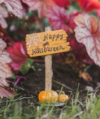 Halloween Spooky Garden